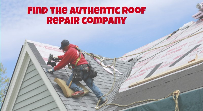 Find the authentic roof repair company